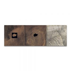 Litoconsorcio I. Técnica mixta sobre madera. 30x90 cm.