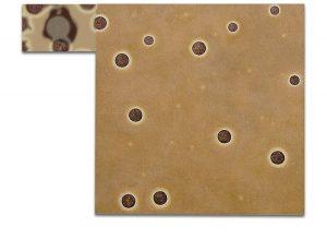 Ovo. Técnica mixta sobre madera, impresión digital sobre lienzo. 120×157 cm.