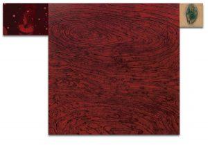 XX. Técnica mixta sobre madera, impresión digital sobre lienzo. 120×179 cm.